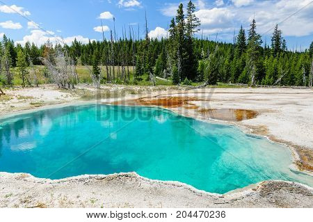 Hot springs in the West Thumb area in Yellowstone National Park
