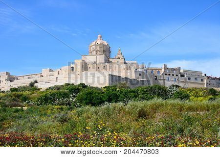 Pretty Spring fields with views towards the citadel Mdina Malta Europe.