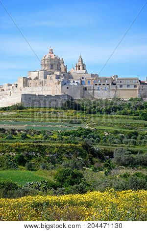 View of the citadel with Spring flowers in the foreground Mdina Malta Europe.