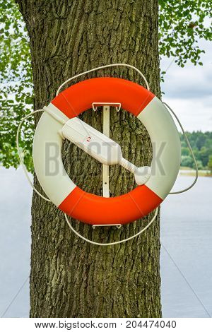Close up of a red and white lifebuoy hanging on an oak tree by the water.