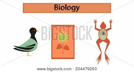 assembly flat icons education Biology frog bird flowers