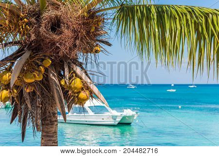 Landscape Of The Caribbean Sea, Bayahibe, La Altagracia, Dominican Republic. Copy Space For Text.