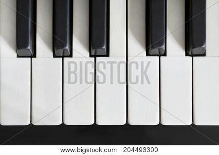 Piano ivory keys close up. Top view
