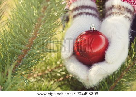 Girl Hands In Woollen Mittens Holding Christmas Red Ball