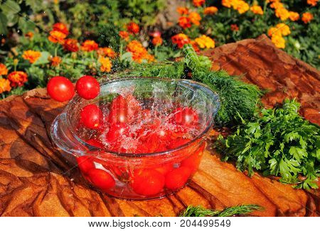 fresh tomatoes falling in pure water, side view