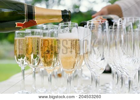many of the champagne glasses on a buffet table. party in open air. Soft focus selective focus