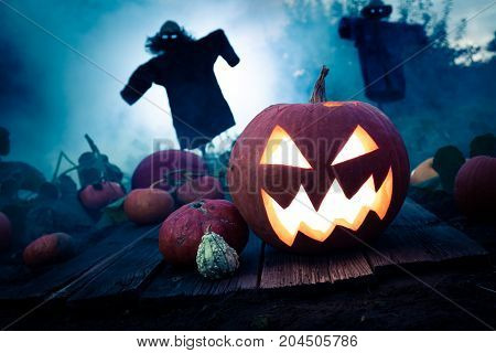 Glowing Pumpkin On Dark Field With Scarecrows For Halloween
