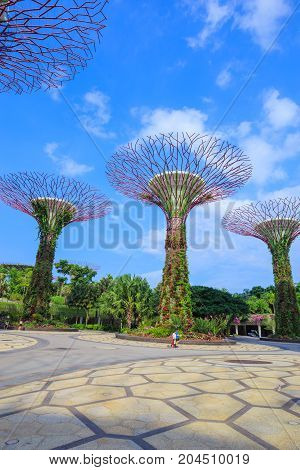 Unidentified Tourist Visited Supertree Of Gardens By The Bay At Singapore