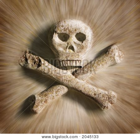 Head Of Skelet