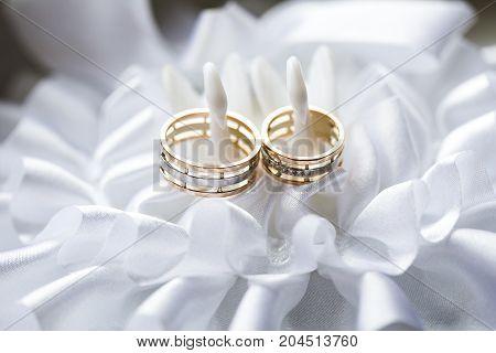 golden rings on the white garter in studio background