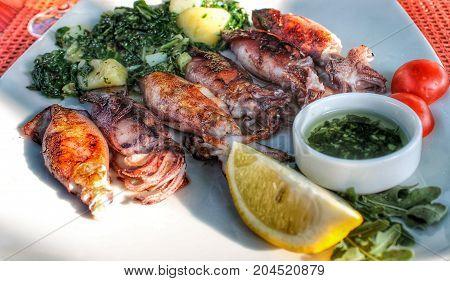 delicious calamari on white plate with potato and borecole