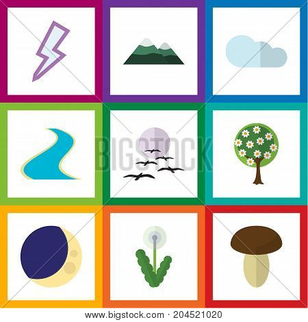 Flat Icon Ecology Set Of Peak, Gull, Floral And Other Vector Objects