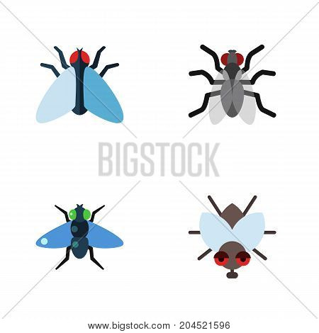 Flat Icon Housefly Set Of Housefly, Gnat, Dung And Other Vector Objects