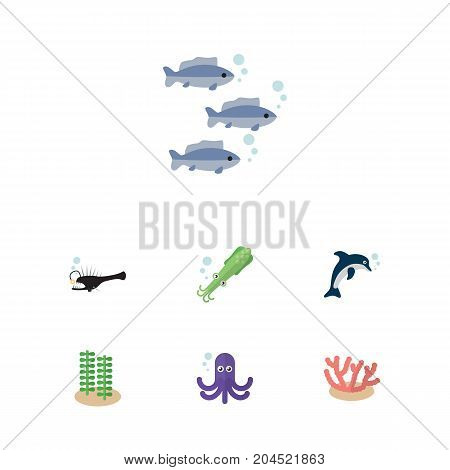 Flat Icon Marine Set Of Algae, Seaweed, Fish And Other Vector Objects