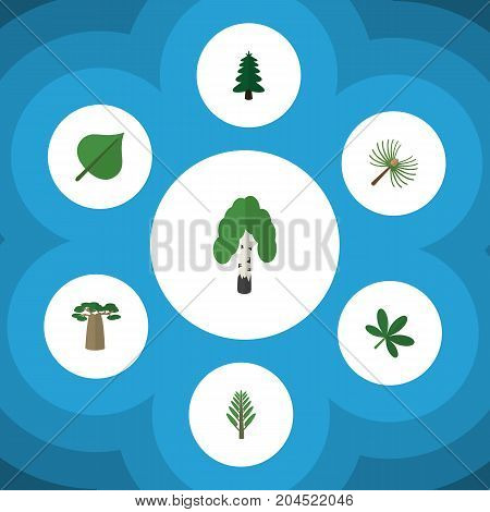 Flat Icon Natural Set Of Rosemary, Jungle, Timber And Other Vector Objects