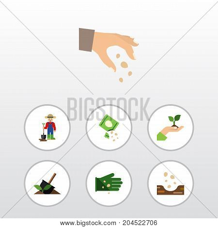 Flat Icon Sow Set Of Care, Packet, Sow And Other Vector Objects