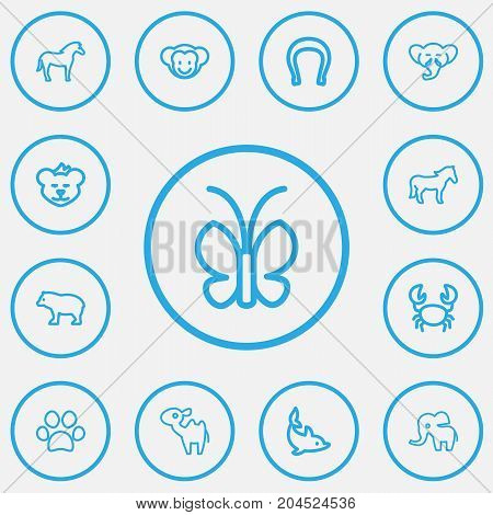 Set Of 13 Editable Zoo Outline Icons. Includes Symbols Such As Steed, Panda, Ape