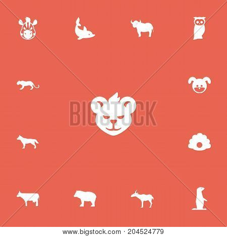 Set Of 13 Editable Animal Icons. Includes Symbols Such As Lynx, Dog, Kine And More