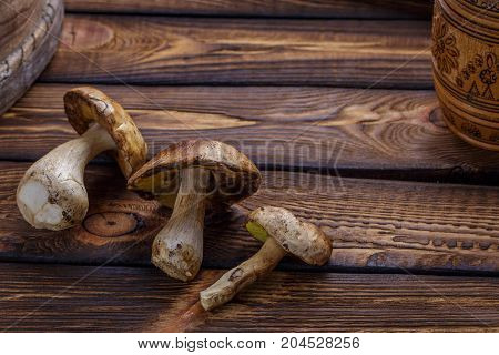 Forest Mushroom over Wooden Background. Autumn Cep Mushrooms. Mushrooms Picking