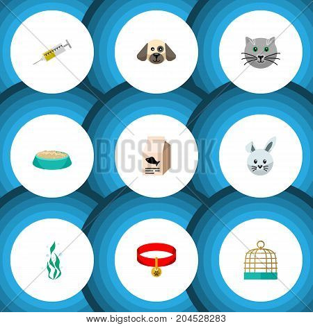Flat Icon Animal Set Of Fish Nutrient, Seaweed, Vaccine And Other Vector Objects