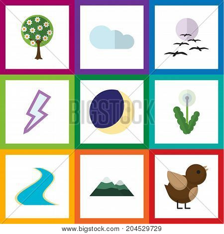 Flat Icon Bio Set Of Gull, Peak, Bird And Other Vector Objects