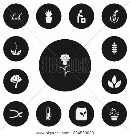 Set Of 13 Editable Planting Icons. Includes Symbols Such As Lawn, Fruit Woods, Lilac And More