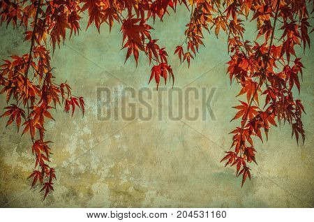grunge background with autumn leaves perfect fall background