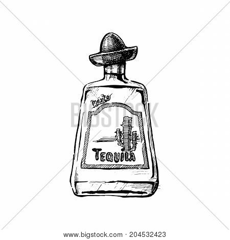 Illustration Of Tequila
