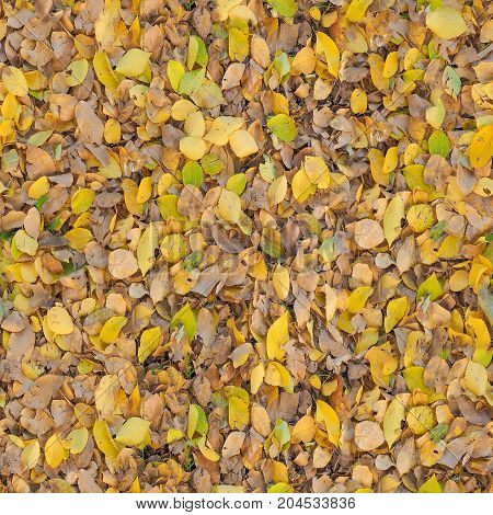 Seamless Brown Leaves Texture Background
