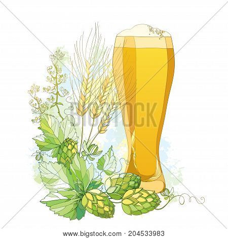 Vector glass of froth beer with ornate Hops and barley ears in pastel isolated on white. Contour hops, barley for Oktoberfest, beer and brewery decor. Beer elements in contour style for brewery design