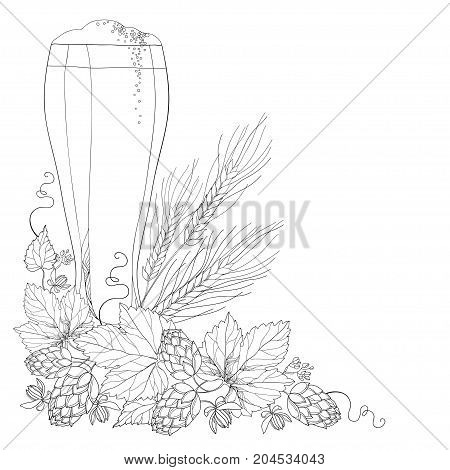 Vector beer glass with ornate Hops or Humulus and wheat ears in black isolated on white. Outline element for Oktoberfest, brewery or beer design. Corner composition in contour style for coloring book.