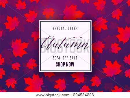 Vector illustration of fashion autumn sale poster with geometric light frame, text sign 50 percent off, falling red maple leaves on dark violet background