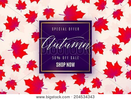 Vector illustration of fashion autumn sale poster with dark violet geometric frame, golden line, text sign 50 percent off, falling red maple leaves on light background