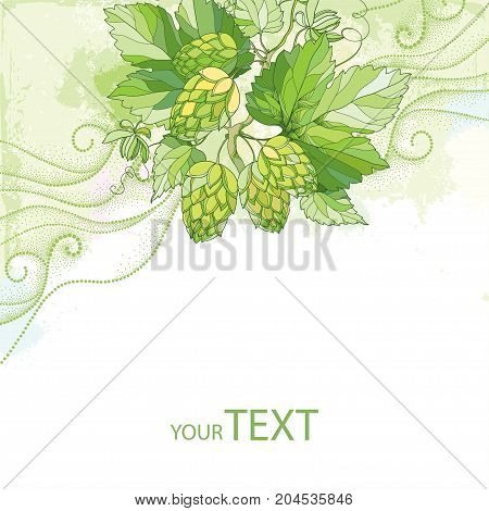 Vector card with Hops or Humulus with ornate leaves and cones on the pastel background with dotted curls. Beer and brewery decor with hops. Organic elements in contour style for summer background.