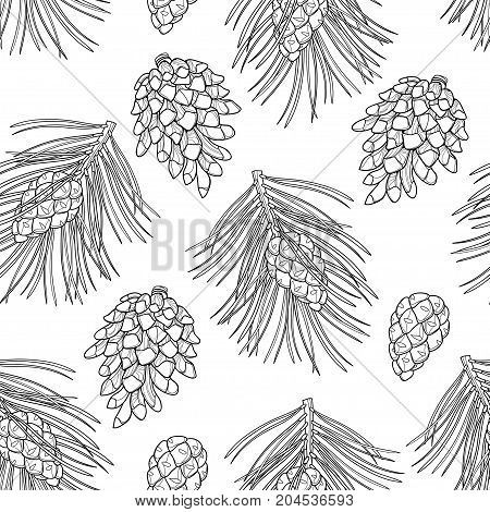 Vector seamless pattern with outline Scots pine or Pinus sylvestris. Pine and cones in black on the white background. Pattern in contour style with coniferous for Christmas design and coloring book.