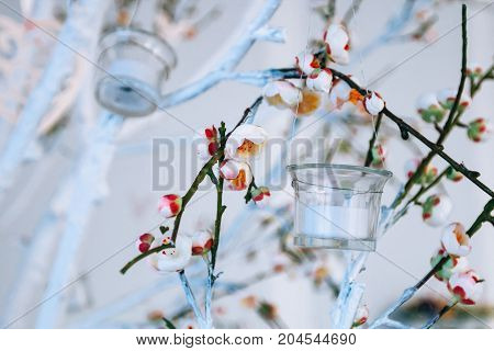Wedding Decor, White And Green Tree Branch With Blossoming Buds, Flowering Tree Branches With White