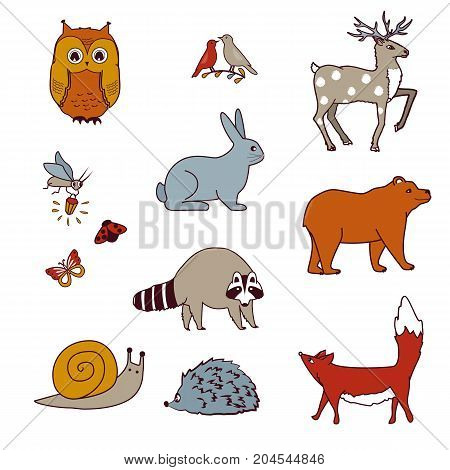 Forest animals set with bear, owl, birds, deer, hare, raccoon, snail, fox, and firefly. Isolated cartoon vector collection. Animals from north and mid-latitudes