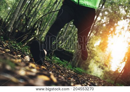 Athletic Man Running Around In Forest On Trail. Outdoor Running In Autumn Forest. Intentional Motion