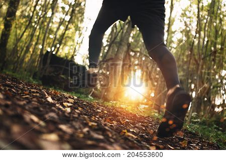 Сlose-up Photo Of Fast Running Athlete's Foot Across A Rough Terrain In Forest. Intentionally Blurre