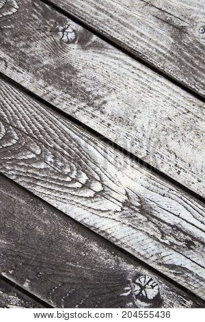 Wooden birch textured boards white-gray, top view
