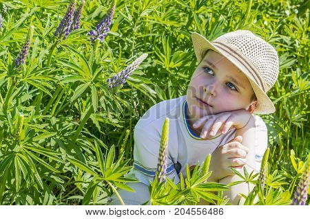 The boy dreaming and thinking looking at the sky. In summer surrounded by purple flowers