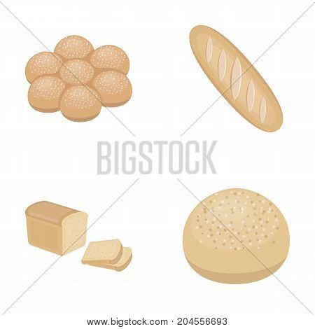 Cut loaf, bread roll with powder, half of bread, baking.Bread set collection icons in cartoon style vector symbol stock illustration .