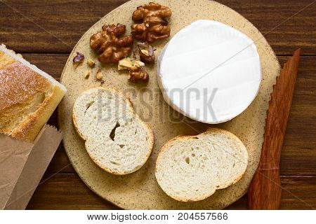 Camembert cheese with baguette slices and walnuts on plate photographed overhead on dark wood with natural light (Selective Focus Focus on the top of the cheese and the baguette slices)