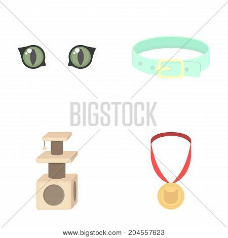 Cat's eyes, a collar, a house for a cat, a medal on a ribbon.Cat set collection icons in cartoon style vector symbol stock illustration .