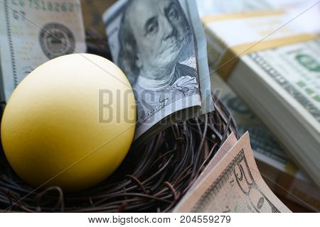 Retirement Savings With A Golden Egg In Nest Surrounded by Money
