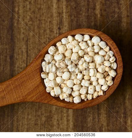 Popped white quinoa (lat. Chenopodium quinoa) cereal on small spoon photographed overhead on dark wood with natural light