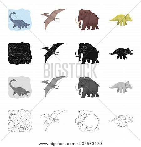 Marine dinosaur, pterodactyl, prehistoric mammoth, triceraptor. Dinosaurs and prehistoric set collection icons in cartoon black monochrome outline style vector symbol stock illustration .