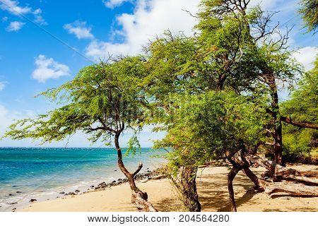 Makena State Park beach, Maui island, Hawaii