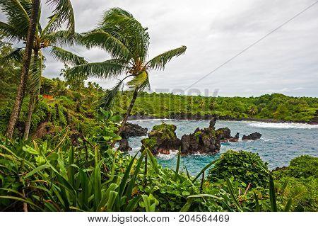 Waianapanapa State Park on Maui island of Hawaii is featuring black lava sand, tidal caves & native plants