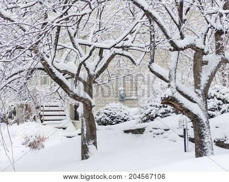 Stairs and trees covered by snow after snow storm. Winter. Toronto Ontario Canada
